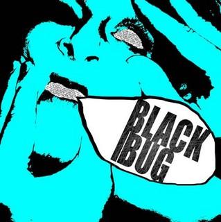 Black Bug